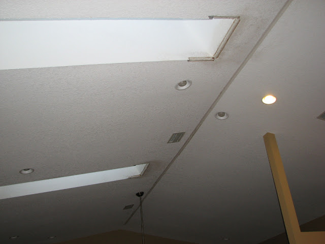 Condensation Issue With A Vaulted Ceiling And Skylights