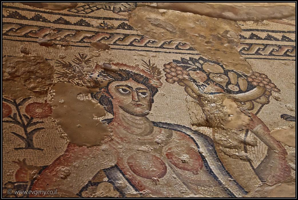 ZIppori Mosaics