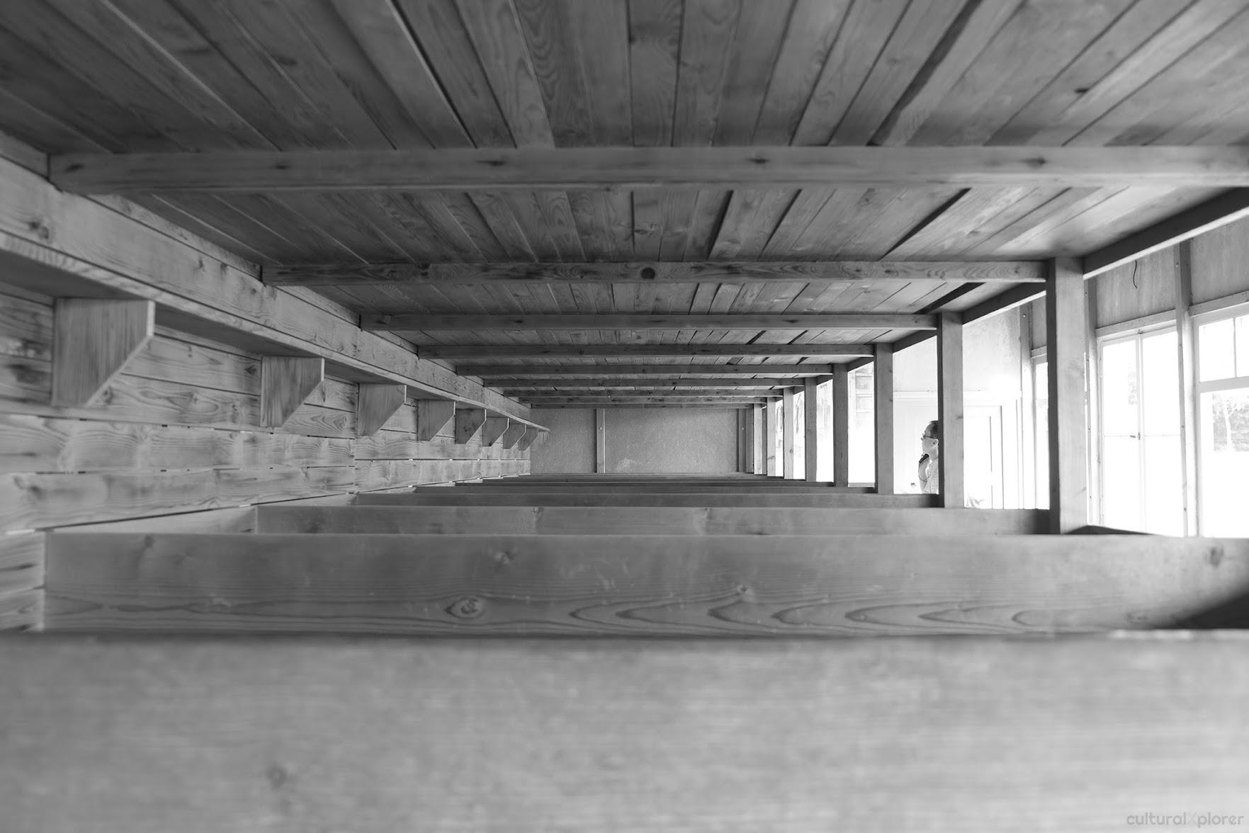 Dachau barracks bunk beds