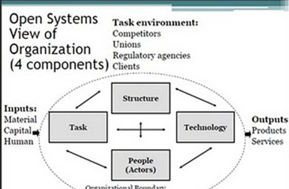 Organizations and Cultures: Organizational Behavior
