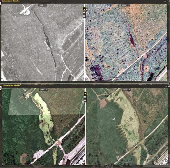 Humedal Cortijo en los años 1998, 2004, 2007 y 2009 respectivamente.