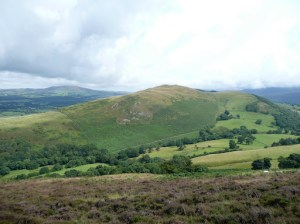Sale Fell from Ling Fell