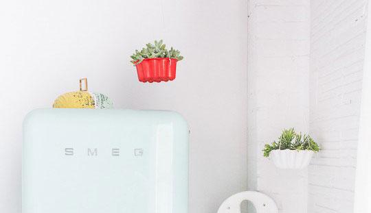 Idea para colgar plantas en la cocina