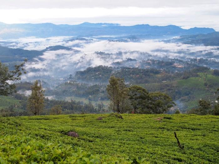 View of Bandarawela