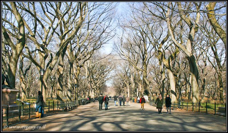 Вид на Америку: Central Park