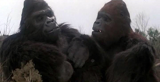 La Dolce Vita: King Kong 2: Ele está com a macaca!