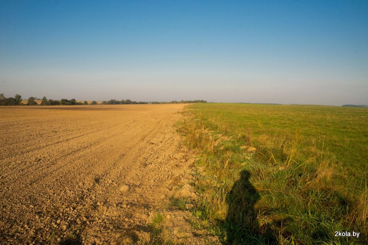 граница областей- Брестской и Гродненской