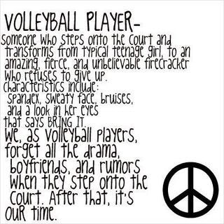 I Love Volleyball Quotes. QuotesGram