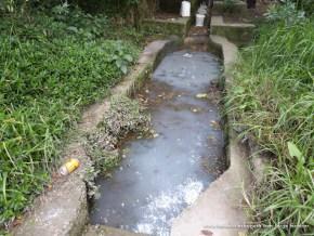 Caudal ecológico con jabón, Humedal Córdoba