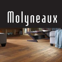 molyneaux carpet complaints  Floor Matttroy