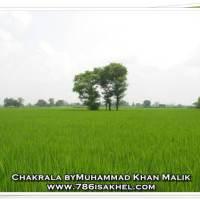 CHAKRALA - NAMAL-KALRI-RIKHI