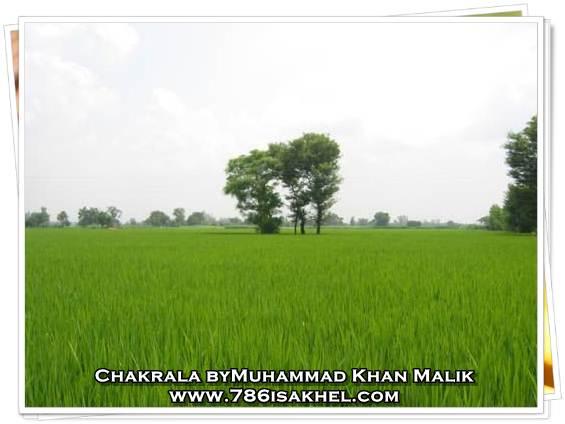CHAKRALA – NAMAL-KALRI-RIKHI