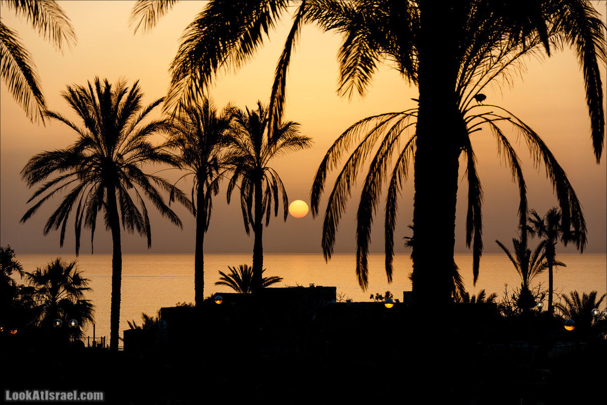 Закат средиземноморский