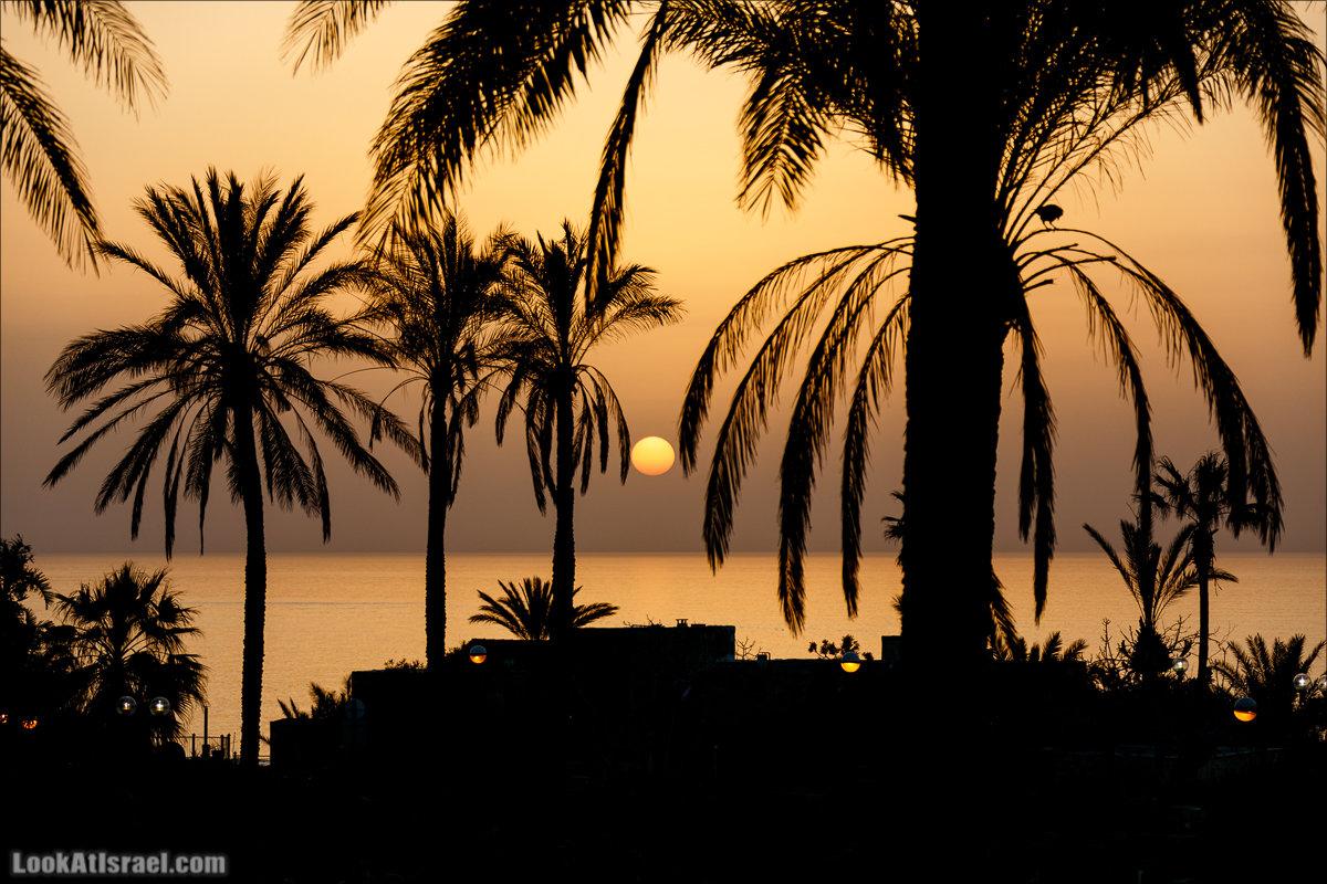 LookAtIsrael.com - Закат в Яффо   Sunset in Jaffa