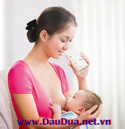 Tinh Dầu dừa thêm vào thực phẩm hàng ngày giúp sữa mẹ giàu dinh dưỡng và kháng thể
