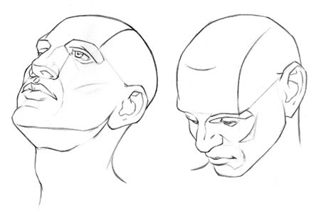 example of different head angles