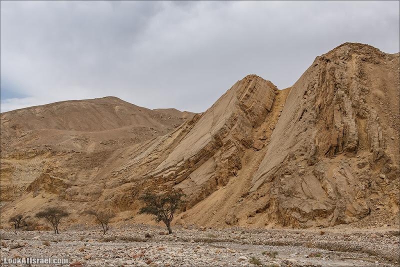 Срез эйлатских гор