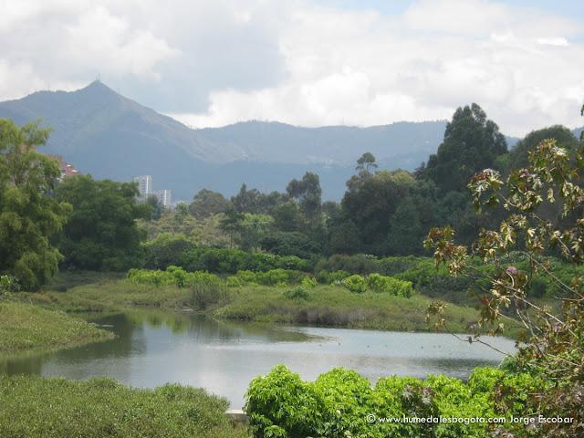 Image result for cordoba wetland