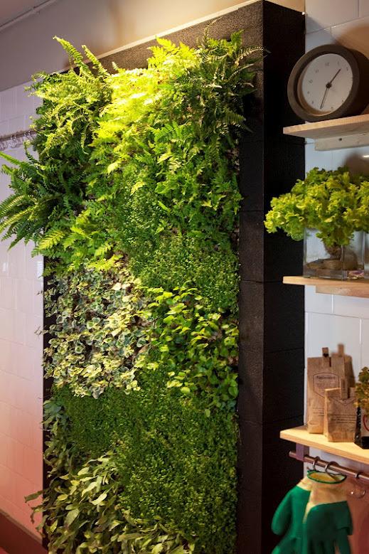 Jardn vertical interior para cocina  Alicante Forestal