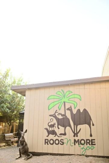 Exotic Petting Zoo in Las Vegas.