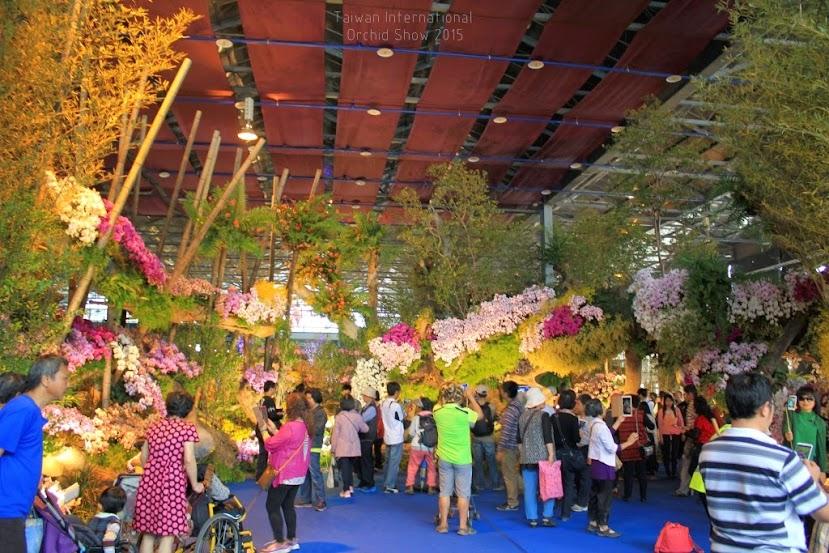 2015 台灣國際蘭展,台南國際蘭展-1