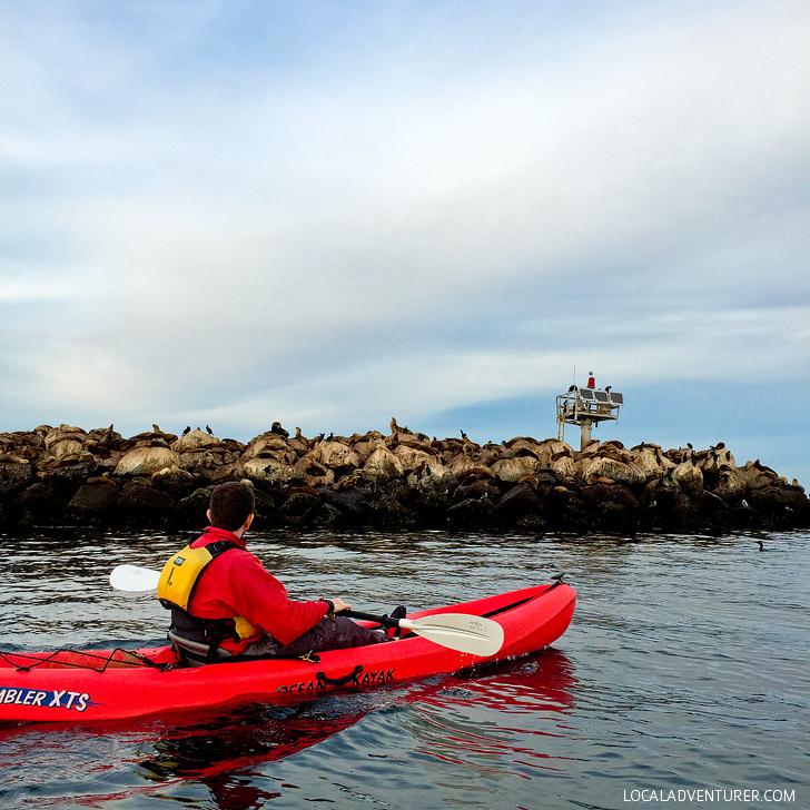 Seeing Coast Guard Pier on Monterey Bay Kayaks.