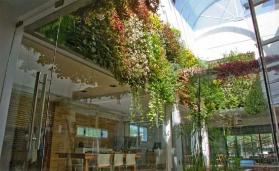 jardín vertical en Buenos Aires