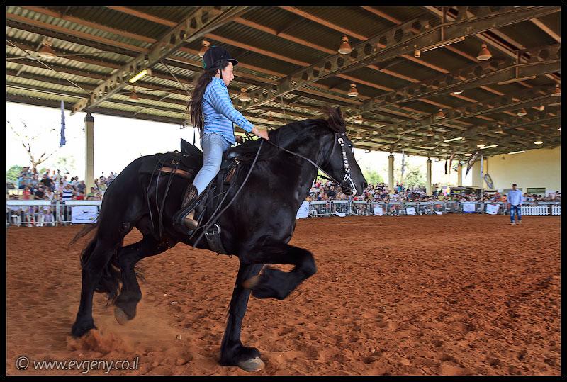 Фото: Stallion Show 2011
