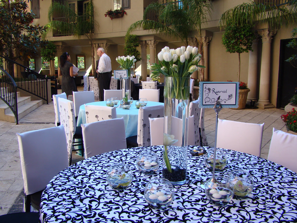 tiffany blue wedding chair covers steel growtopia dutchbaby black and white with touch of a