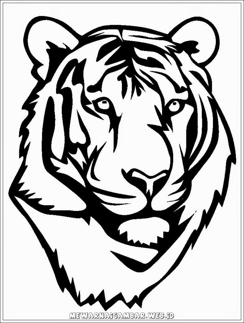 Gambar Harimau Hitam Putih : gambar, harimau, hitam, putih, Himpunan, Gambar, Animasi, Harimau, Hitam, Putih, Hitamputih44