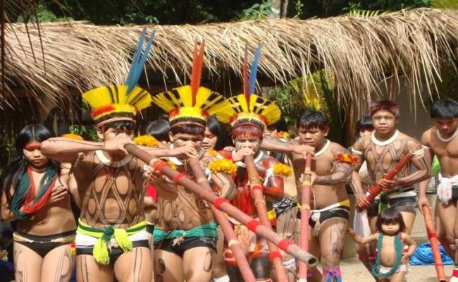 Povos Indígenas Do Brasil A Música Indígena