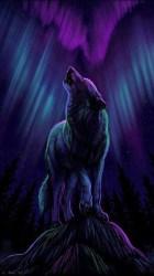 30+ Lightning Galaxy Galaxy Anime Wolf Wallpaper