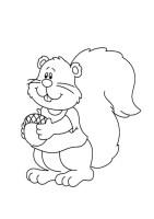 Eichhörnchen Bilder Zum Ausdrucken Kostenlos ...
