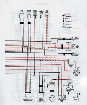 Mildred Patricia Baena: buell wiring diagram