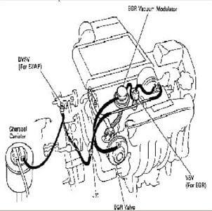 Wiring Diagram Database: Crown Victoria Vacuum Hose Diagram