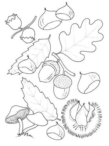 Malvorlagen Herbst Kostenlos Drucken - Kinder zeichnen und