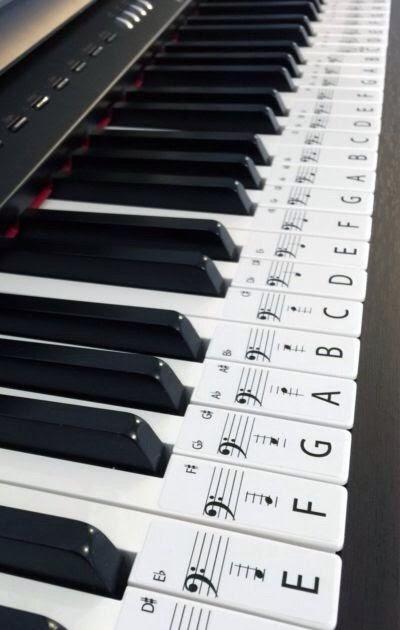 36 Key Keyboard Labeled : keyboard, labeled, Label, Piano, Design, Ideas