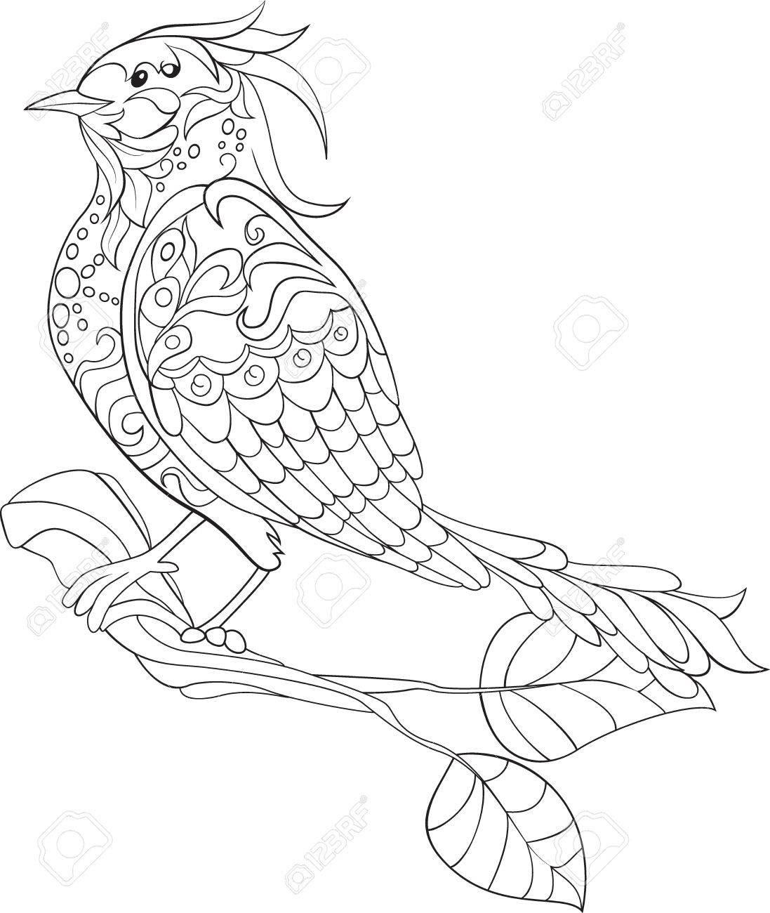 Heimische Vögel Ausmalbilder Vögel