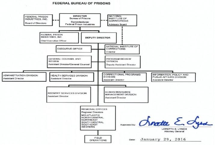 Attorney General Usa Hierarchy