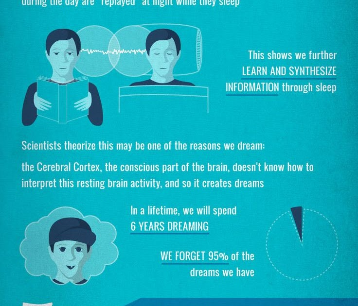 Why Sleep Is So Important   Directory of Infographics