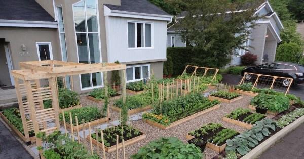 home garden design front lawn