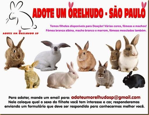 adote_um_orelhudo