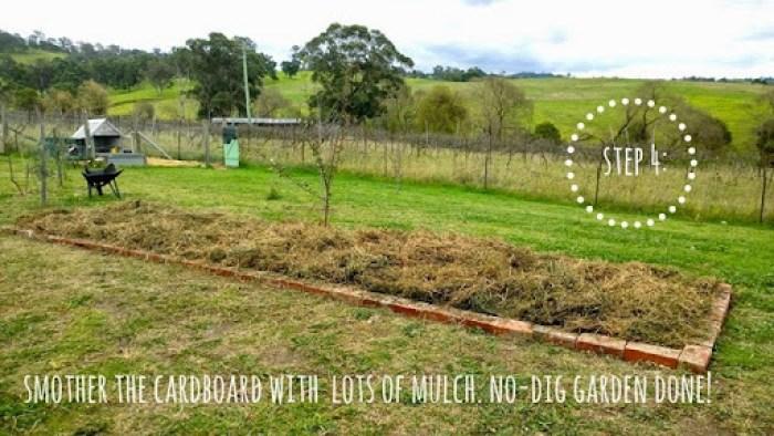 no dig garden 5