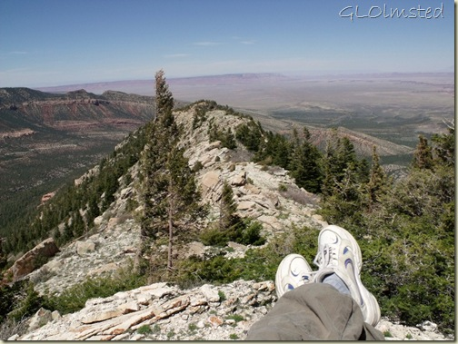 North Canyon, Vermilion Cliffs & House Rock Valley from Marble View Kaibab National Forest Arizona
