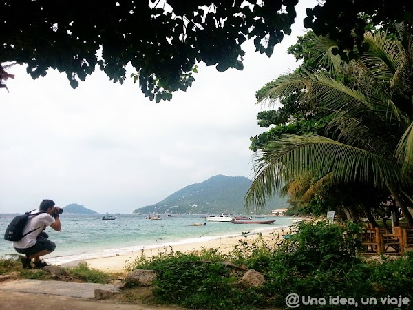 Koh-Tao-Sairee-Beach-1.jpg