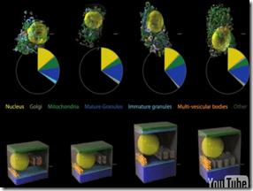Scripps 3d cell Visualization-comparison