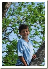 peter in pecan tree