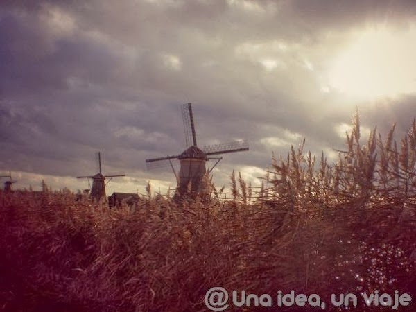 Molinos-Kinderdijk-3.jpg