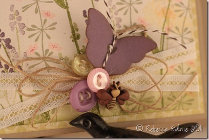 spring life wiper card close up