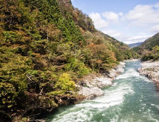 Japan blog c 9